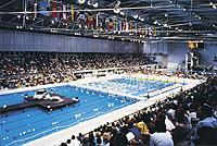 olimpic swimming pool